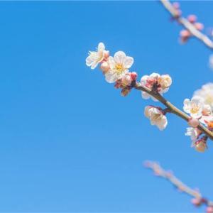 【🔴確かに寒い日もあるけど!💦春に使ってはいけない「3つのアイテム」とは??🤔🔴】
