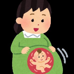 【プレママ⑦】虫歯と胎動(妊娠6ヶ月目/20~23w)