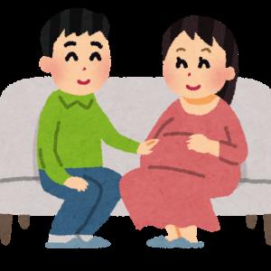 【プレママ⑨】引継と帰省(妊娠8ヶ月目/28~31w)
