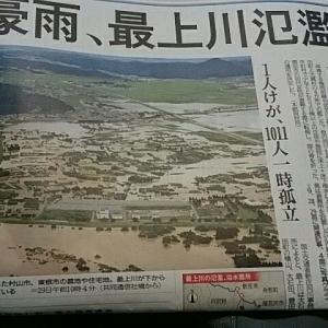 最上川氾濫・オリヅルラン