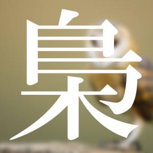 【名前・漢字の由来】ふくろうは恐ろしい鳥だと思われていた【梟】