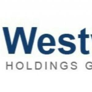 【WHG】ウエストウッド・ホールディングス・グループより配当金受領。配当金を受領した気づいたこととは…?
