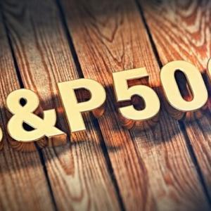 S&P495は日本のTOPIXと変わらない!?GAFAMに世界中の投資家の目が向いているうちに優良企業を探そう!