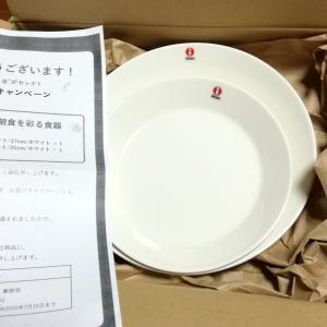 [当選品]6月2個目 森永製菓 小麦胚芽のクラッカー イッタラプレート2枚(34)
