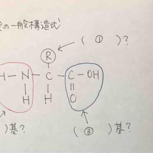 【生物】アミノ酸の一般構造式 確認テスト