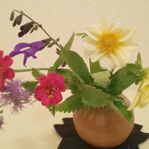 ブルーミーで宅配のお花を注文