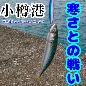 11月13日 小樽南防波堤は帰りが辛い