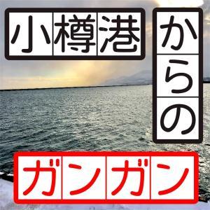 12月8日 小樽港 作戦名ガンガンいこうぜ