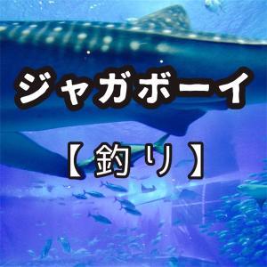 ジャガボーイ【釣り】