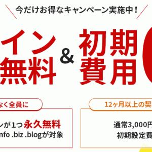 エックスサーバー「ドメイン永久無料&初期設定費用0円キャンペーン」