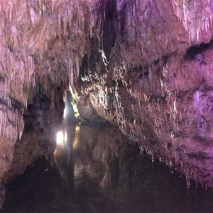 岡山の鍾乳洞「満奇洞(まんきどう)」は見どころ満載でした。