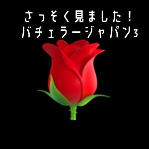 【感想】ついにきたバチェラージャパン3!
