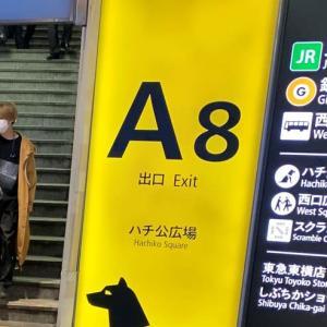 渋谷で半日歩き回る 天使にラブ★ソングを