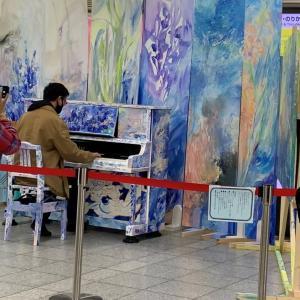 駅のピアノ☆メタセコイア☆かわせみ