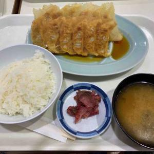 北海道避暑ツアー その1