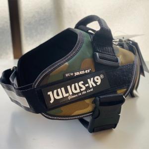Julius-K9 ユリウスケーナイン IDCパワーハーネスを頂きました!