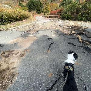 富士芦ノ湖パノラマパークがとんでもないことになっていました。