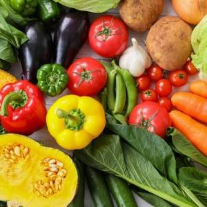 野菜を食べたくなたっら農家レストランSOZAIYAに決まり!