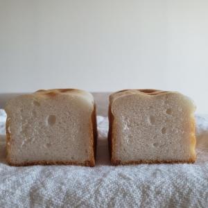 4倍発酵ミニ食パンはきれいに釜伸びしづらい