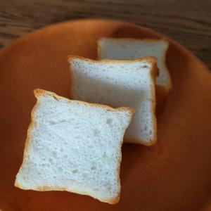 空洞と焼き縮みの原因、5倍発酵させたミニ食パンの食感