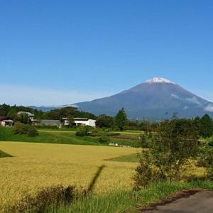 富士山に雪?