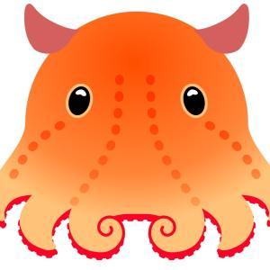 めったに体験できない深海魚。なんと触りたい放題!八景島シーパラダイス