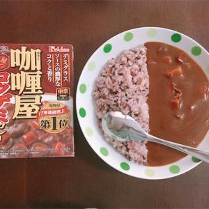 【在宅カレー】「伽喱(カリー)屋 コクデミカレー」(ハウス食品)