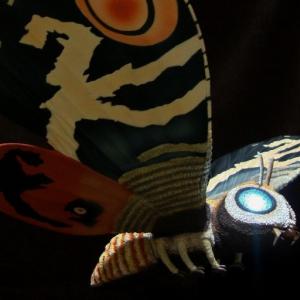 発光妖精とモスラ