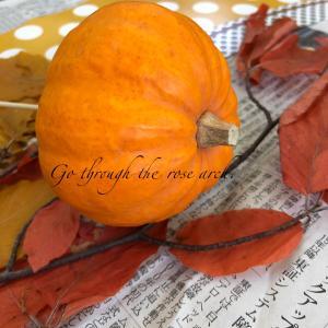 カボチャを使ったハロウィンフラワーアレンジ