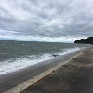 2019年10月13日深日漁港の様子