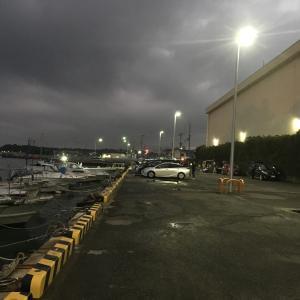 2019年10月19日深日港の様子