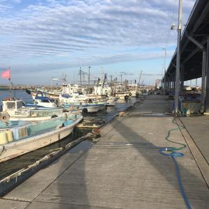 2020年1月25日深日漁港の様子