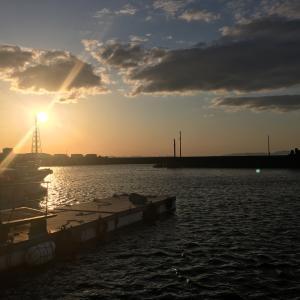 2020年4月5日深日漁港の様子