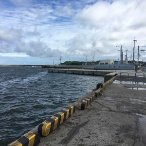 2020年10月10日深日港の様子