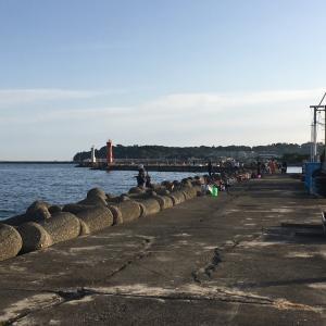 2020年11月1日深日港の様子