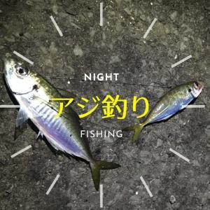 半夜でアジ釣り