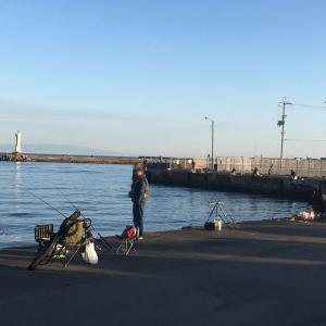 2020年12月6日深日港の様子