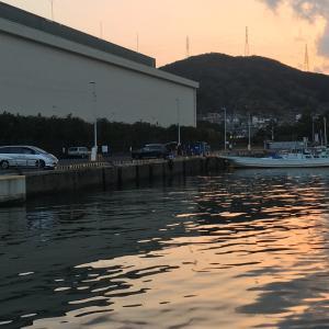 2021年1月16日深日港の様子