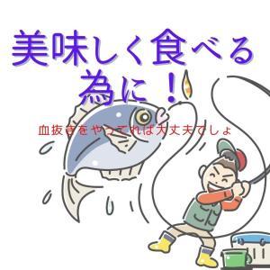 釣った魚を持ち帰る方法