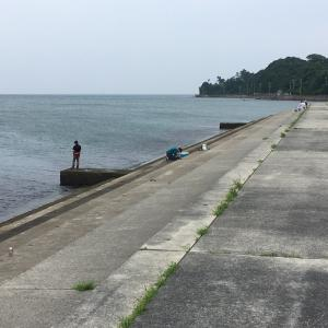 2021年7月4日深日漁港の様子