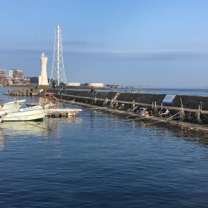 2021年7月11日深日港の様子