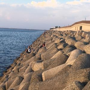 2021年7月30日貝塚人工島の様子