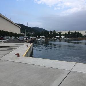 2021年9月4日深日港の様子