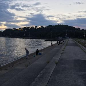 2021年9月5日深日漁港の様子