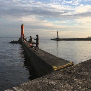 2021年9月5日深日港の様子