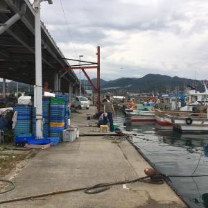 2021年9月26日深日漁港の様子