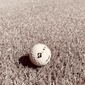 ゴルフ もうワン・ステージ上がる為に…  イメージを如何に描くか… 技術的な事にこだわってはいけない。