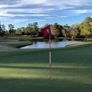 ヒューストン The Golf Trails of The Woodlands Panther Course でプレー。 少しお疲れモードのコースで本場 テキサス・ウェッジを多用… ベン・ホーガンの故郷です。
