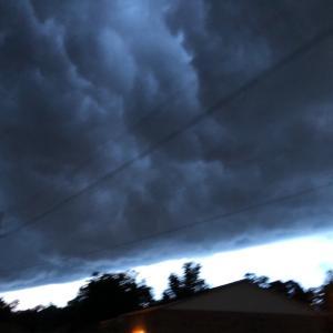 恐ろしい感じの雷雲が発達してきました… 怖くて急いで帰宅したのでした(笑)…