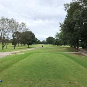 ゴルフの好調を維持するのに必要な事はリズム…  ポイントはどうやってそれを保つかですね